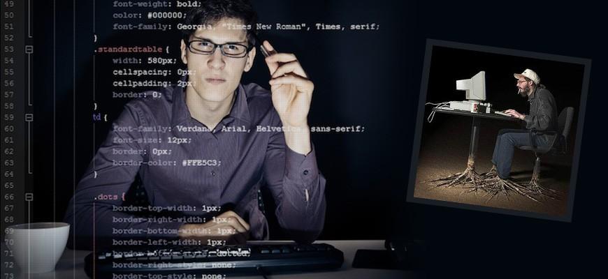 yazılımci
